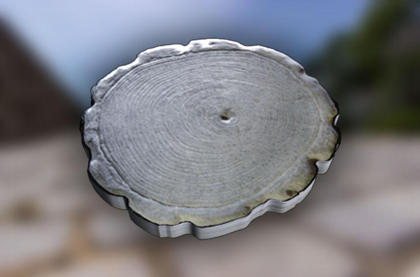 Pbp-log-stone